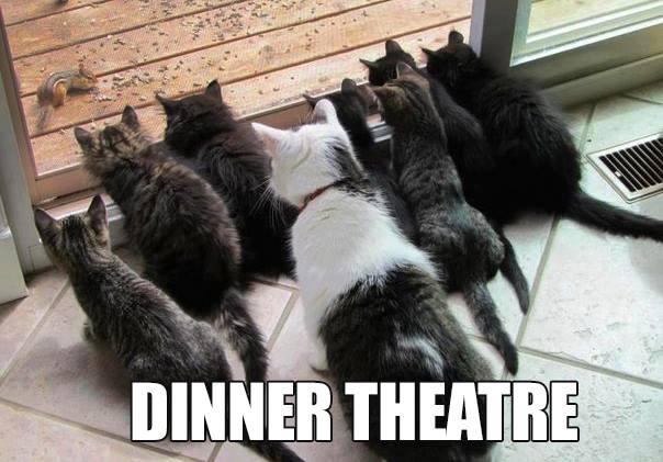 7455 cat dinner theatre, sharon butler